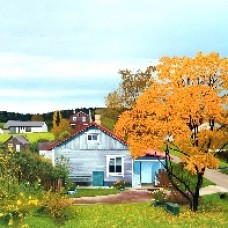 Autumn Garden in the vicinity of Lake Ladoga